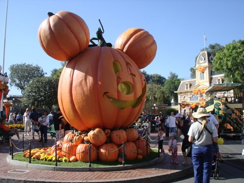 Disneyland 2009 017